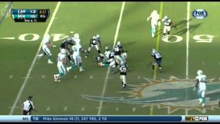 Panthers Vs Dolphins week 12 Highlights