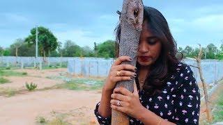 Selavanuko Cover Song   Heart Attack   Pavithra Aswath