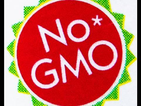 Marketing Genetically Modified Crops - Pamela Ronald