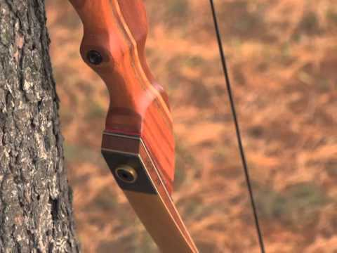 Pse Mustang 60 Recurve Bow Youtube