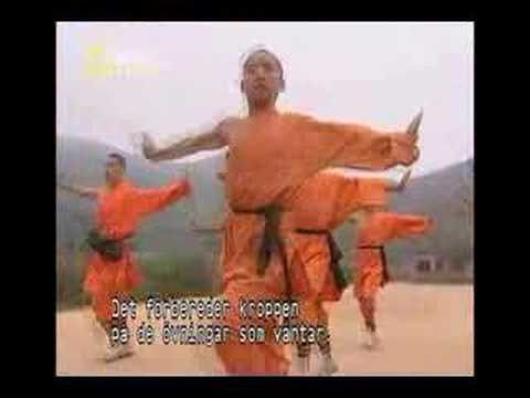Myths & Logic Of Shaolin Monks Pt 1 Image 1