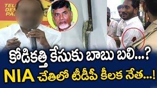 కోడికత్తి కేసుకు బాబు బలి..? NIA చేతిలో టీడీపీ కీలక నేత..! Ys Jagan Kodi Kathi Case Latest News YCP