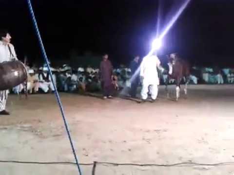 chakwal dance must watch