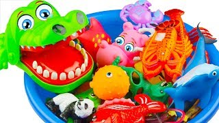 Learn Sea Animals Names and Wild Zoo Education Video Toys For Kids