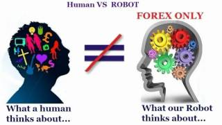Forex bonus abuse