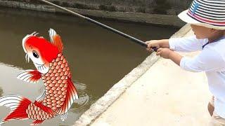 Trò Chơi Câu Cá Rô Phi trong ao của Bé Bi - Phuong An TV
