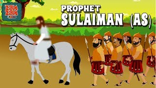Quran Stories In English | Prophet Sulaiman (AS) | English Prophet Stories | Quran Cartoon
