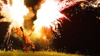 T REX ON THE 4TH OF JULY! (100+ ROMAN CANDLES AT ONCE)