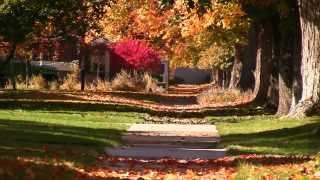 Autumn Color Extravaganza - Missoula, Montana MT