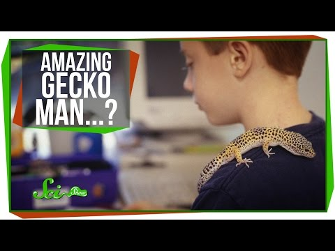 Hottest Year Ever, And Amazing Gecko-man Getup! video