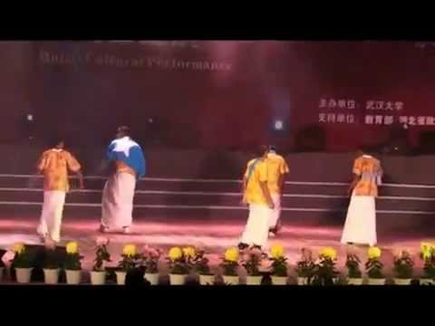 Somali performance in China