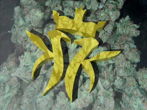 Kottonmouth Kings - Tangerine Sky (Lyrics)