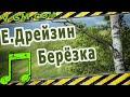 Евгений Дрейзин вальс Берёзка mp3