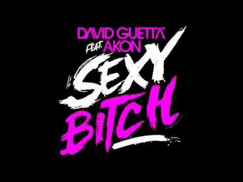 David Guetta Feat. Akon - Sexy Bitch (audio) video