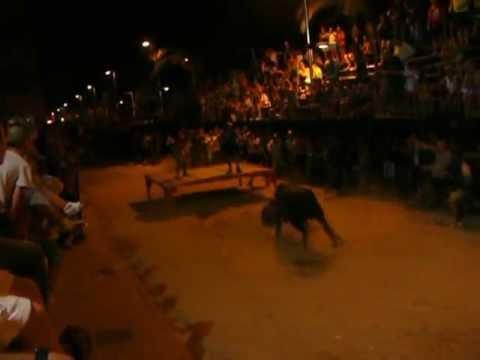 cojida de un aficionado por una vaca en alfafar.fiestas taurinas agosto 2012
