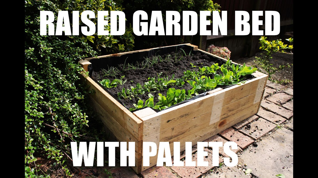 How To Make A Raised Garden Bed For Free Using Pallets