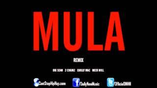 Big Sean Video - Big Sean - Mula (Remix) (Feat. 2 Chainz, Earlly Mac & Meek Mill)