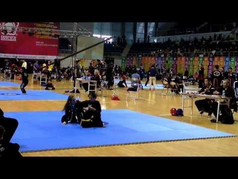 Kuk Sool Won Korea trip 2013 Image 1