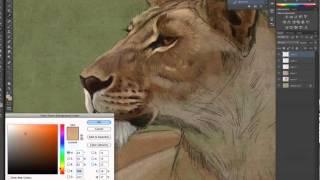 Aaron Blaise - ULTIMATE Brush Texture Bundle - Free