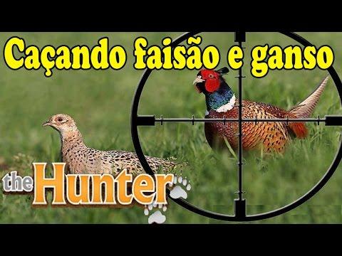 """Caçando Faisão, Ganso e Javali """"Diarios de caça"""" - The Hunter Ep.4"""