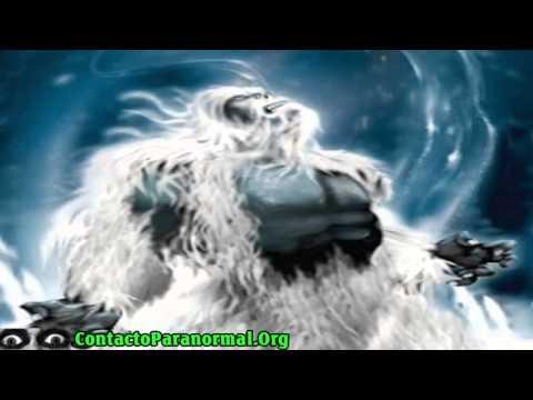 Yeti, Pie Grande El abominable hombre de las nieves