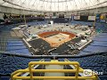 Tropicana Field, home of the Tampa Bay Rays with its new Shaw Sports Turf Synthetic turf system.