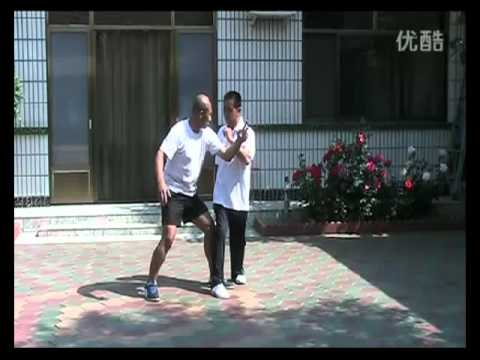 BajiQuan applications by Mr Yang Jie (杨杰) Image 1