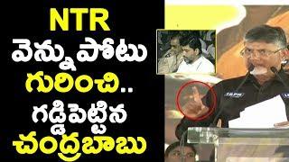 NTRవెన్నుపోటు గురించి.. గడ్డిపెట్టిన చంద్రబాబు Chandrababu Speaks about SrNTR