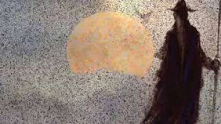 Watch Francesco Guccini Bisanzio video