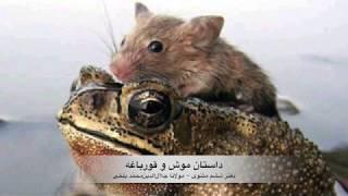 داستان موش و قورباغه، موسیقی متن از مجیدانتظامی