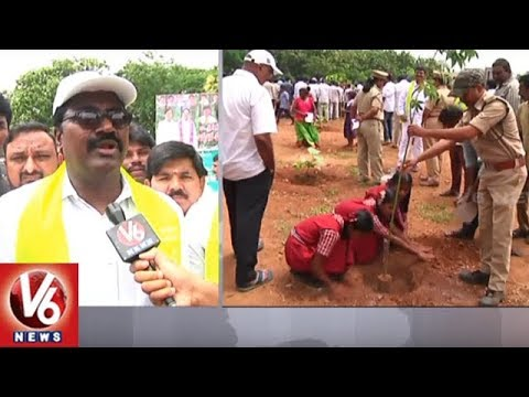Khammam St Marry School Celebrates KTR Birthday By Planting 2000 Saplings | V6 News