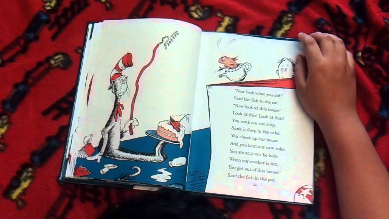 Cat In The Hat I Read Story Books
