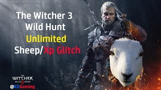 The Witcher 3 Wild Hunt - 1.31 Unlimited Money Glitch
