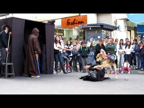 Darth Vader es humillado por un perrito juguetón