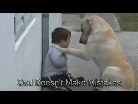 Sweet Mama Dog Interacting With A Beautiful Child With Down Syndrome. From Jim Stenson. video