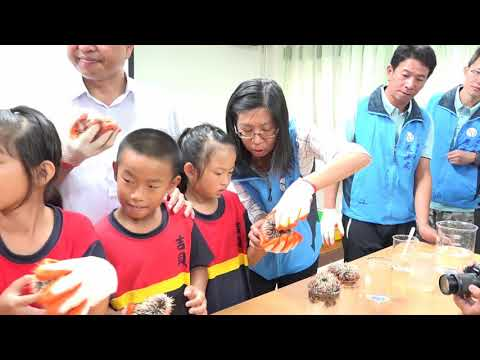 海洋教育實作體驗(另開視窗至youtube)