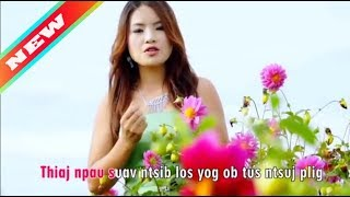 ★ ★ The Best Of Hmong Song Collection By Paj Nyiag Vaj