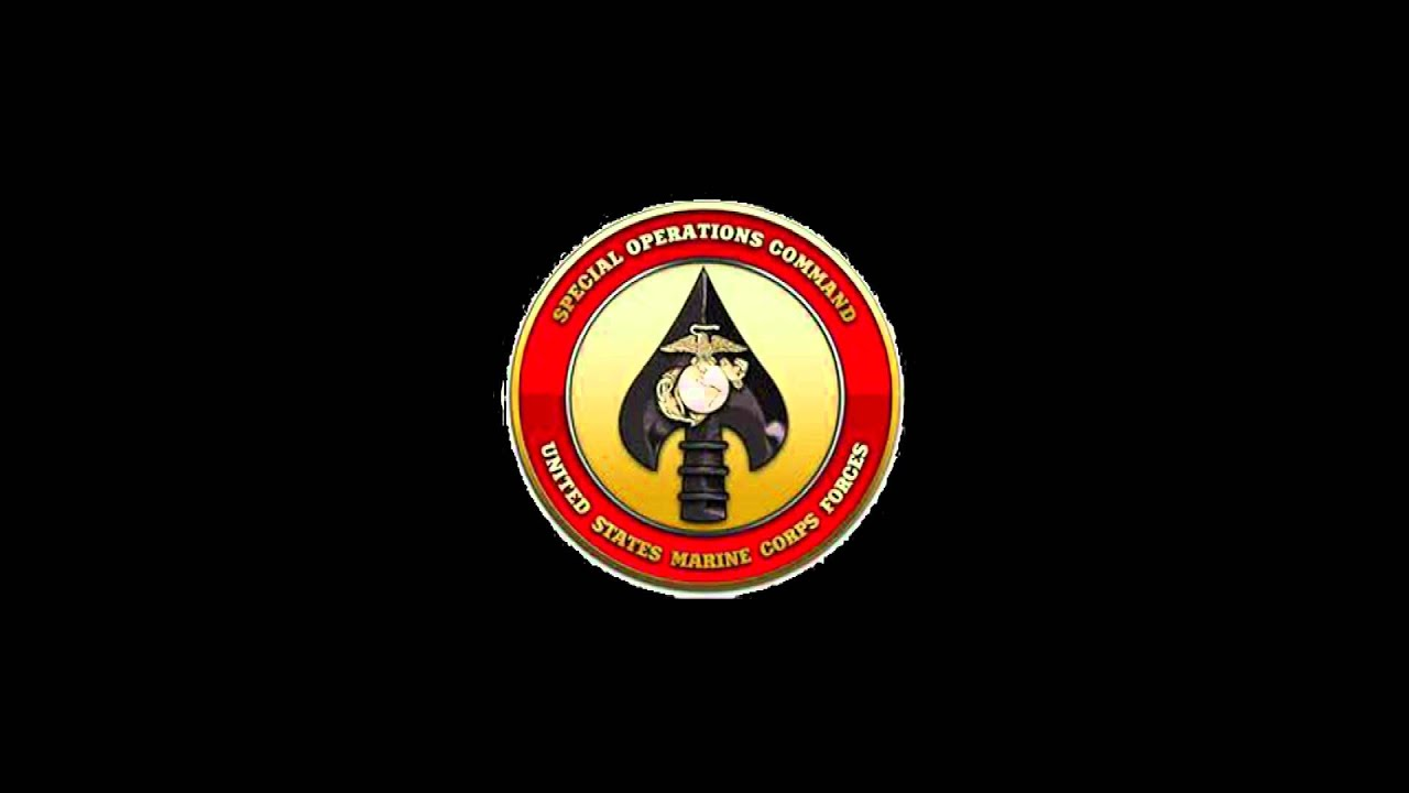 MARSOC to receive new breast Insignia gt The Official