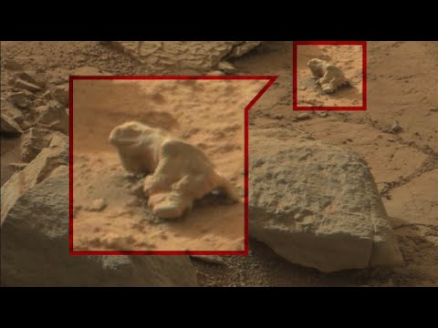 Searching for alien life in Mars photos