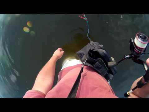 рыбалка с бомбардами видео
