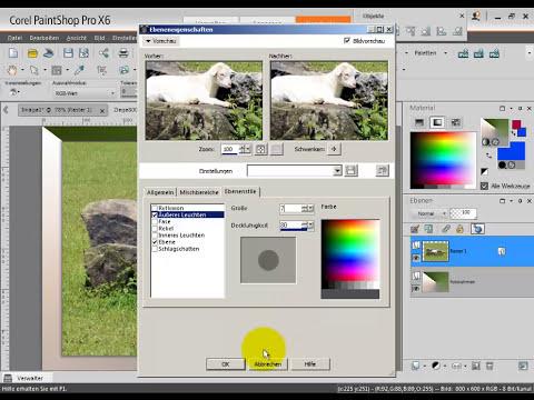 Foto mit schnellem individuellem Rahmen - Paintshop Pro Tutorial deutsch X2, X3, X4, X5, X6