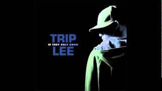 Watch Trip Lee Follow The Crowd video