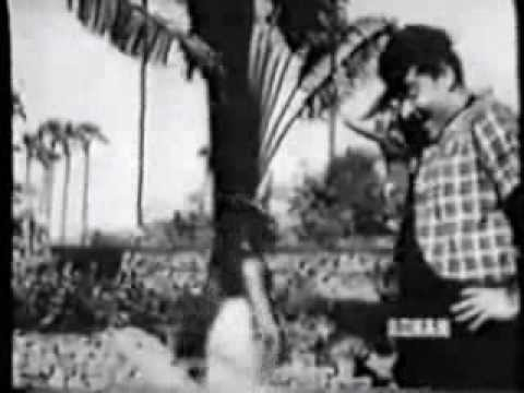 Tumse Kuch Kehna Hai.. Guest House (1959) By Sarla Didi & Harish Happy.. video