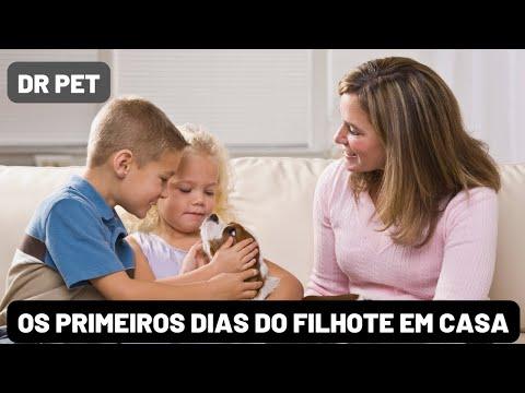 Dr. Pet » Dica Pet - Os primeiros dias do filhote em casa