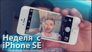 7 дней и 7 истин об iPhone SE