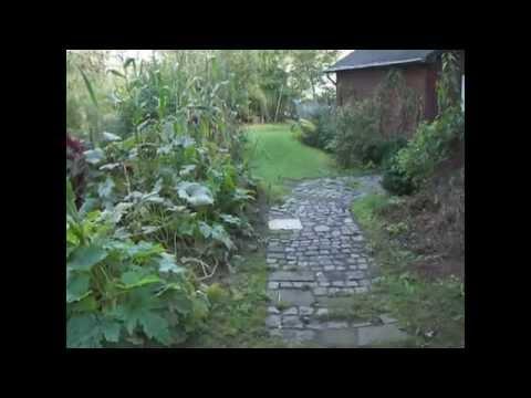Nr. 31.) Nutzgarten: Rundgang Im Oktober, Herbstgemüse Wächst üppig