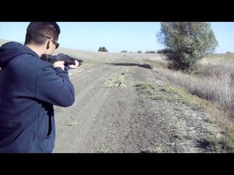 A219 A.  scatter gun