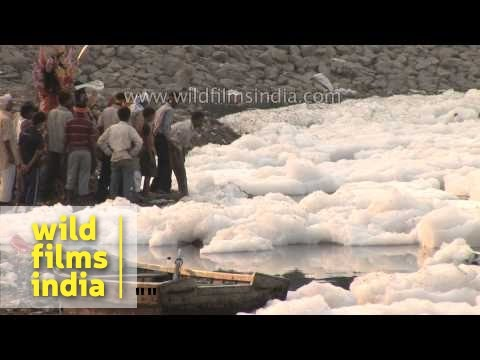 Death of a river: Delhi's water comes from the Yamuna!