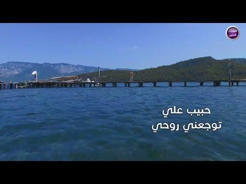 حبيب علي - توجعني روحي (فيديو كليب حصريا ) | 2017