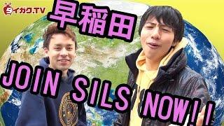 JOIN SILS NOW!!~早稲田国際教養学部生を直撃~